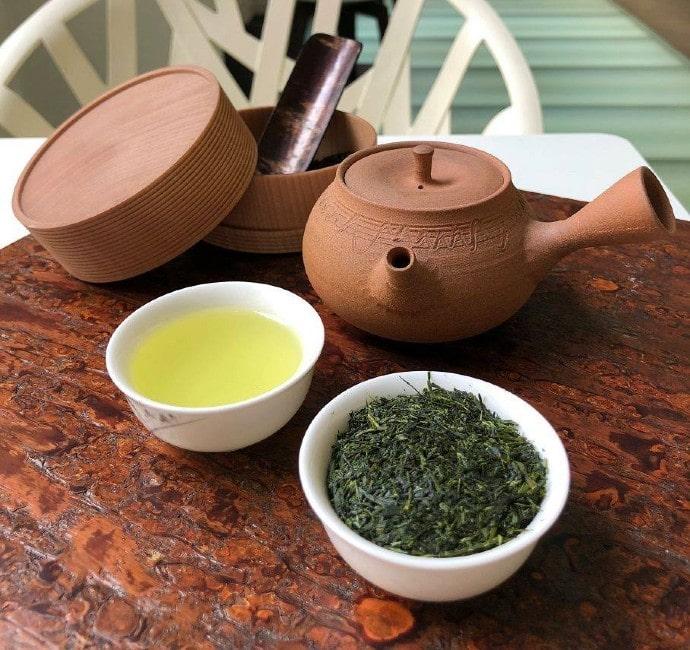 Dégustation de thés verts primeurs 2019
