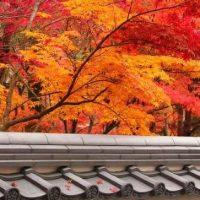 Jardins Secrets du Japon, troisième édition