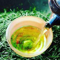 Dégustation des thés vainqueurs du Grand Prix du Japanese Tea Selection Paris 2019