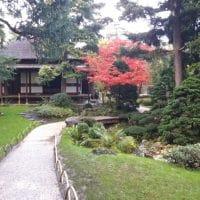Visite guidée du jardin Albert Kahn par l'AFAO
